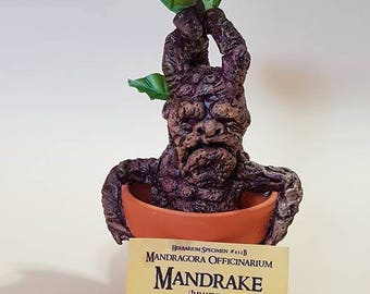 Mandrake inspired by Harry Potter