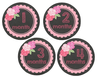 Baby Month Stickers Baby Stickers Monthly Baby Stickers Baby Month Stickers Chalkboard Stickers Baby Shower Gift