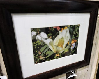 St. John framed flower 5x7 ready to hang wall art