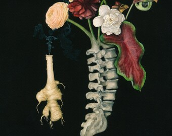 Spinal- Vanitas inspired Watercolor Painting of Spine with Flowers- Giclee Print