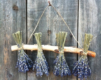 Dried Lavender Sampler