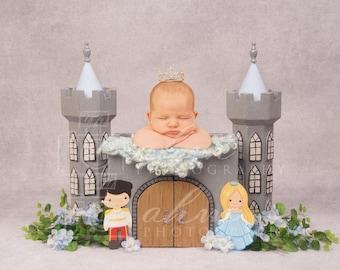 DIGITAL Newborn Cinderella and Prints Charming Princess Castle Backdrop. One of a kind Prop!