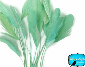 Eyelash Feathers, 1 Dozen - MINT GREEN Stripped Coque Tail Feathers : 3599