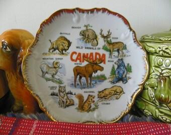 Vintage Souvenir Collector's Plate - Wild Animals Of Canada - Moose, Buffalo, Sheep, Wolf, Squirrel, Cougar, Bear, Deer, Beaver