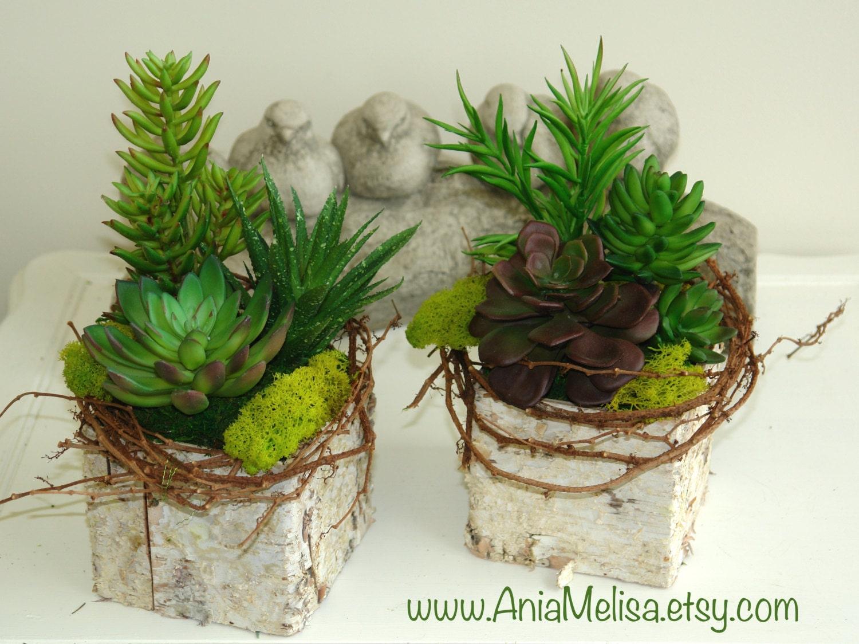 Birch Bark Vases Wood Boxes Square Flower Pot Centerpieces