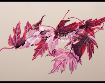 Autumn Blaze Leaves: 11x15 print of an original watercolor painting