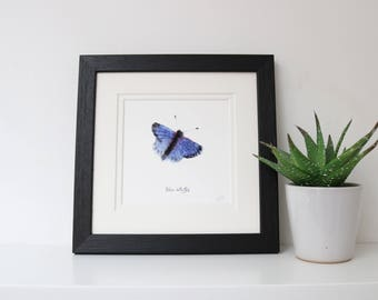Blue Butterfly Framed Square Print