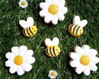 Summer Daisy & Bee Gift Box