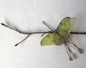 Handmade Luna Moth (Actias Luna) Hair Bobby Pin in Green Cotton and Silk Organza Fabric