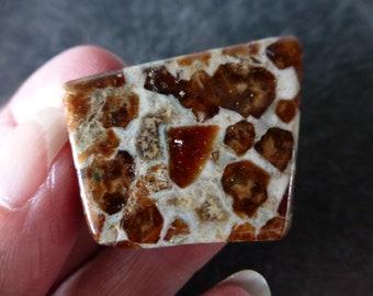 Spessartine Garnet In Limestone Flat Tumblestone or Mini Slice  (20.7 grams / 35 mm)   (14)  - FREE UK POSTAGE