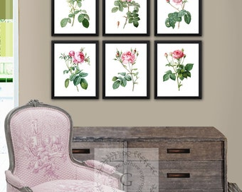 Gifts for mom, Pink Roses Art Prints set of 6 unframed Redoute roses,  pink rose art, pink rose artwork, pink rose wall decor,
