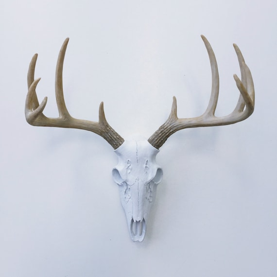 Any Color Realistic Deer Skull Wall Mount Fake Deer Antlers