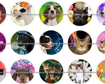Cats and Dog Pins, Flatback Buttons or Magnets 12 Ct.