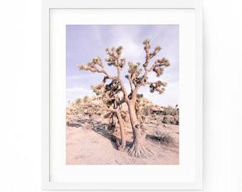 Joshua Tree Photo, Joashua Tree Print, Desert Print, Joshua Tree Wall Art, Desert Printable, California Print, Western Print, Arizona Desert