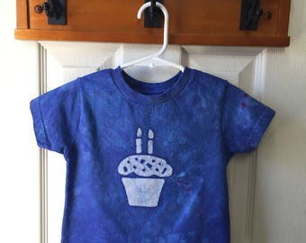 Kids Birthday Shirt, Second Birthday Shirt, Boys Birthday Shirt, Girls Birthday Shirt, Cupcake Birthday Shirt, Kids Birthday Shirt (2T)
