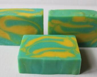 Cedarwood Sage Men's Soap /  All Natural Cold Process Vegan Soap