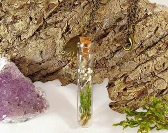Terrarium necklace, glass vial necklace, moss necklace, real flower necklace, plant necklace