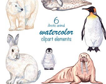 WATERCOLOR CLIPART, arctic animals, penguin clipart, scrapbooking clipart, watercolour clip art, polar bear, bunny, commercial use, png
