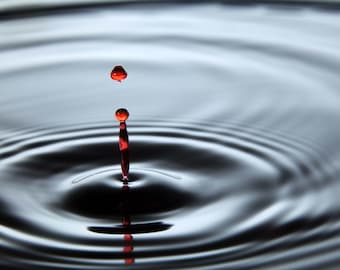 Red Drop - 8x10 Photograph, High Speed Photography, Water Drop