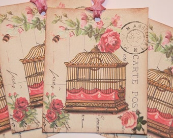 Pink Birdcage Roses Paris Postcard Gift Tags