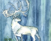 Watercolor Painting, Whit...