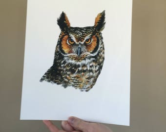 Great Horned Owl Portrait Print