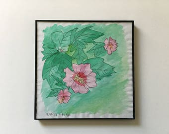 85/100: Hibiscus Flowers - original framed watercolor illustration