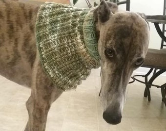 greyhound, knitted, scarf, dog, cowl, pet, neck, warmer, sweater