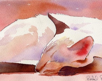 Lilac Point Siamese Cat Art Print of my Original Watercolor     ..Asleep..
