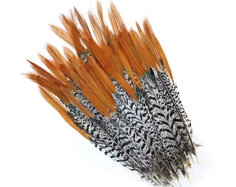 Lady Amherst Pheasant Feathers (red) (5x)