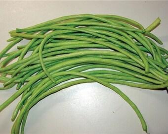 Chinese Green Yard Long Heirloom Bean Seeds Non Gmo Green Noodle Bean Asparagus Bean Asian Heirloom Naturally Grown Open Pollinated