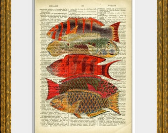 TROPICAL FISH COLLAGE dictionary page art print - upcycled antique dictionary page with a retooled antique fish illustration - wall art