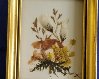 4 Small Dried Flowers Pictures - Each Very Small