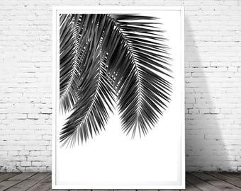 Palm Leaf Print, Tropical Print, Botanical Print, Black and White Print, palm tree print, Scandinavian Poster, Plant Print, Large Poster