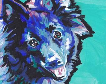 "Schipperke modern Dog portrait art print of pop art painting bright colors 13x19"""
