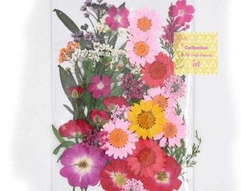 Mixed of Hand Pressed flower- pack of 40