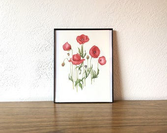 Vintage Original Poppy Flower Painting / Drawing, Botanical Hanging Wall Art, Red, Floral