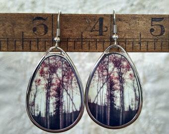 Dark Deep Woods, Tear drop Earrings, Forest