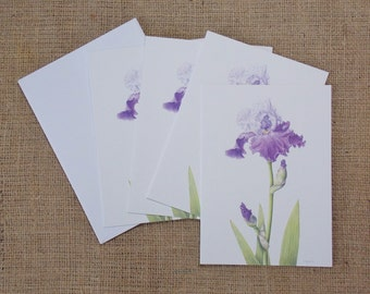 """Bearded Iris, purple and white, 4 blank botanical art note cards with envelopes, 5"""" x 7"""", all one design"""
