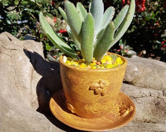 Bee /Planter/Succulents/Spring/Home Decor/Funky/Flowers/Plate/Honeycomb/Handmade/Rustic/Canadian made/Outdoor Indoor Decor