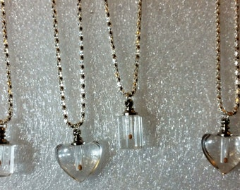 Mustard Seed Necklace [mustard seed pendant]  in glass container on silver chain