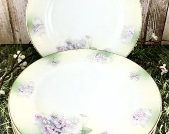 Vintage Bread & Butter Plates, Set of 5, Floral Violet/Pansy Purple and Green Design with Gold Rim, Made in Germany