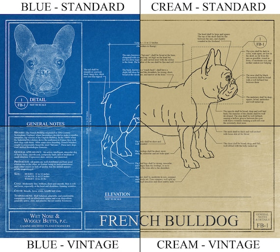Personalized brittany blueprint brittany art brittany wall personalized brittany blueprint brittany art brittany wall art brittany gift brittany print french brittany dog malvernweather Images