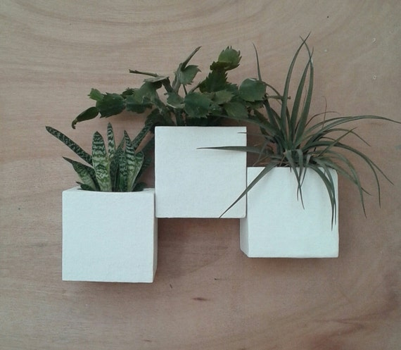 Wall Planters Composition X 3 by Etsy