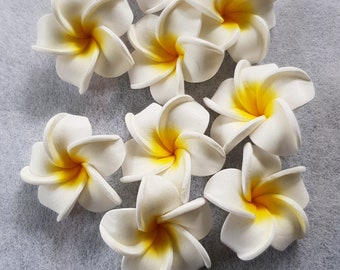 Frangipani flowers made from foam.