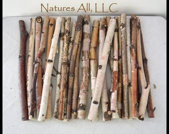 Crafting Sticks/White Birch Sticks/24 Piece Set-12 Inch Lengths/Wood Sticks For Crafts/Rustic Wood Sticks For Crafting/Tree Branch Sticks/