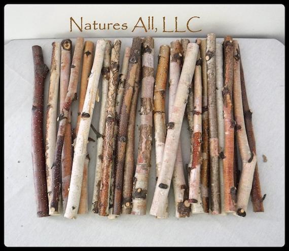 Crafting Sticks/White Birch Sticks/24 Piece Set-12 Inch Lengths/Wood Sticks For Crafts/Rustic Wood Sticks For Crafting/Tree Branch Sticks/