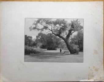 Old Lithograph of Botanic Gardens Melbourne Australia Signed William Crothers Fitler (1857-1915)