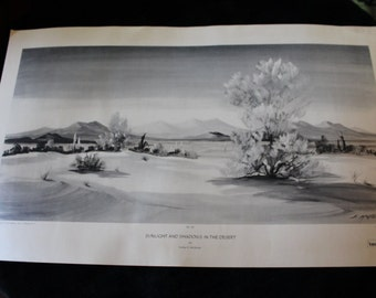 Mid Century Evelyn E. McGinnis Black and White Lithograph - No. 36 Sunlight and Shadows in the Desert, Private Collection