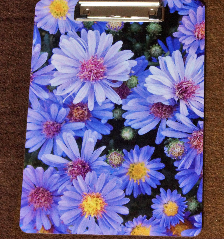 Blue Flower Clipboard Flowers Clipboard Blue Aster Flower